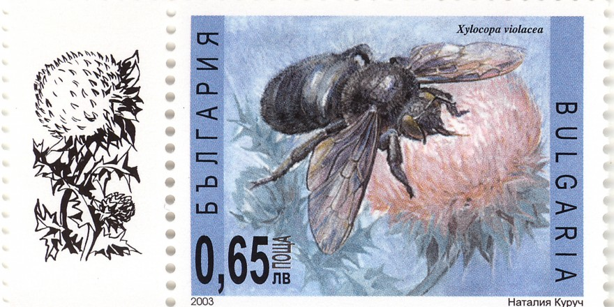 stamps_pchelixylocopa